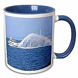 3dRose Sandy Mertens Michigan Travel Designs - Ferry to Mackinac Island Michigan - 11oz Two-Tone Blue Mug (mug_6273_6) offers