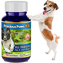 Precious Paws: All Natural Hip & Joint Support + Pain Relief Treats for Dogs | Turmeric, Boswellia, Glucosamine, Chondroitin, MSM - for Arthritis Aches, Mobility, Inflammation & Stiffness | 120 Count