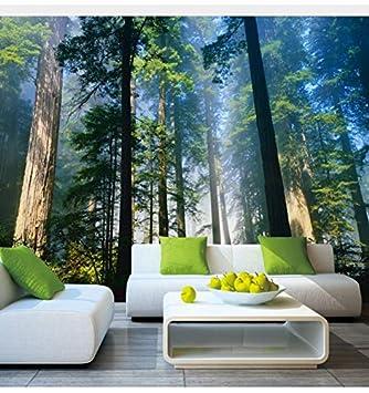 amazon com dalxsh 5d murals forests wallpaper nature fog trees 3dimage unavailable