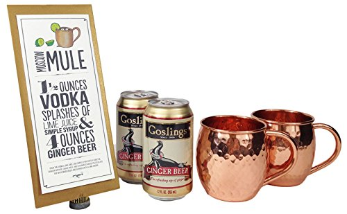 ginger beer kit - 4