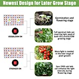 Phlizon CREE Cob Series 1000W LED Plant Grow Light