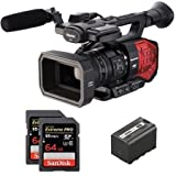 Kit AG-DVX200EJ Camcorder Panasonic 4K + 1 Akku SWIT 6A + 2 Memory Card Sandisk 64 GB 95MBs - Microphone not included