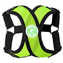 Gooby - Comfort X Step-in Harness, Choke Free Small Dog Harness with Micro Suede Trimming and Patented X Frame, Green, Medium