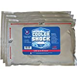 "3 Lg. Cooler Freeze Packs 10""x14"" - No More Ice! Cooler Shock Replaces Ice and Is Reusable"