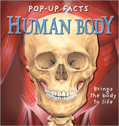 (Pop-up Facts: Human Body )