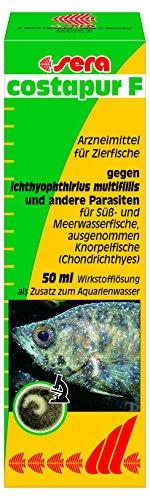 sera 02130 costapur F 50 ml - Arzneimittel für Zierfische gegen Ichthyophthirius multifiliis und andere einzellige Hautparasiten