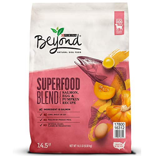 Purina Beyond Natural Dry Dog Food; Superfood Blend Salmon, Egg & Pumpkin Recipe - 14.5 lb. Bag (Best Affordable Dry Dog Food)