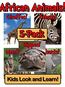 African Animals! Learn About African Animals and Enjoy Colorful Pictures - Look and Learn! (250+ Photos of African Animals)