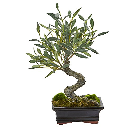 Nearly Natural Mini Olive Artificial Bonsai Tree by Nearly Natural