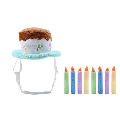 Pssopp Sombrero del cumpleaños del Animal doméstico Sombrero ...