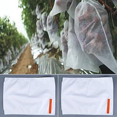 Davevy - 50 bolsas de malla para proteger las plantas y las frutas ...