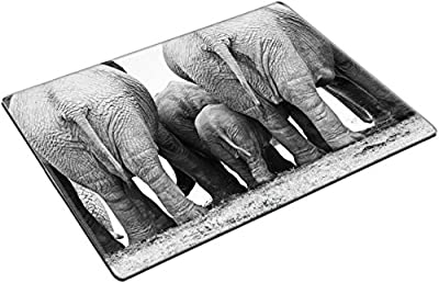 MSD Place Mat Non-Slip Natural Rubber Desk Pads design: 37533166 backside of a herd standing close together in black and white Addo Park South Africa
