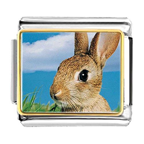 GiftJewelryShop Gold Plated Alert Bunny Rabbit Bracelet Link Photo Italian Charm ()