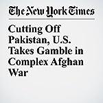 Cutting Off Pakistan, U.S. Takes Gamble in Complex Afghan War | Mujib Mashal,Salman Masood