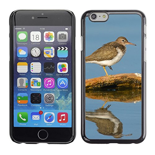 "Premio Sottile Slim Cassa Custodia Case Cover Shell // F00009127 oiseau // Apple iPhone 6 6S 6G PLUS 5.5"""