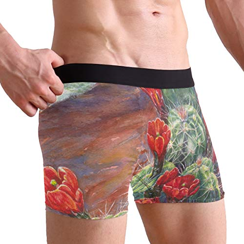 Mens Boxer Briefs Watercolor Cactus Flower Bird Soft Bikini Breathable Underpants Underwear for Boys