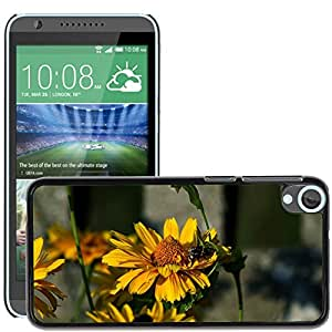Hot Style Cell Phone PC Hard Case Cover // M00130651 Insect Bee Village Nature Flora // HTC Desire 820