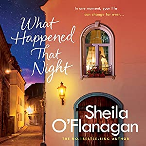 What Happened That Night Audiobook