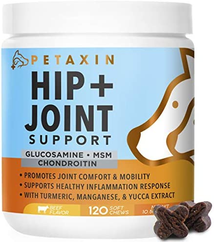 Petaxin Glucosamine for Dogs – Advanced Hip and Joint Supplement for Dogs – Dog Joint Supplement for Joint Pain Relief and Mobility – Dog Glucosamine with Chondroitin, MSM, Turmeric – 120 Soft Chews