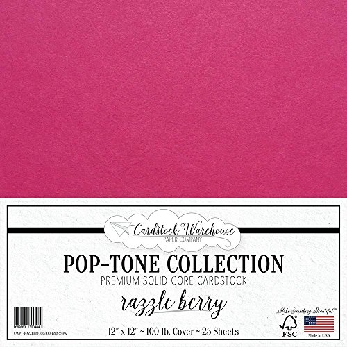 Razzle Berry Pink Cardstock Paper - 12 x 12 inch 100 lb. Heavyweight Cover - 25 Sheets from Cardstock Warehouse ()