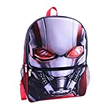 Antman 16 inch Backpack - Big Face