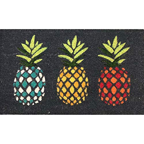 Pineapple Doormat Outdoor, Black with Vibrant Multi Color Three Pineapples Print Front Door Mat Tropical Fruit Theme Rug, Beach Coastal Nautical Accent Durable Entryway Carpet, 18