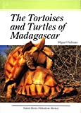 The Tortoises and Turtles of Madagascar by Miguel Pedrono (2008) Hardcover