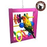 Bird Intellective Toy for Parrot Macaw African Greys Budgies Parakeet Cockatiels Conure Macaw Lovebird Cage Chew Toy