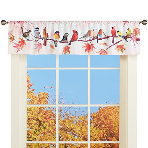 Collections Etc Beautiful Autumn Birds Window Valance Curtain, Cardinals, Chickadees, Yellow Finches on Branches with Leaves