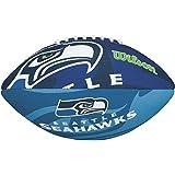 Wilson NFL JR Team Logo FB SE