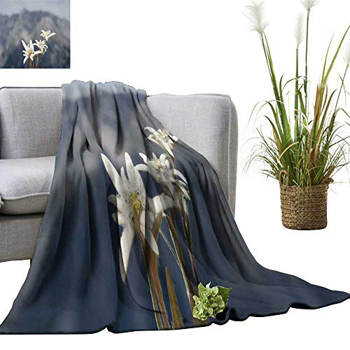 YOYI Travel Blanket Three Edelweiss in The bavari Mountains Easy to Carry Blanket 50