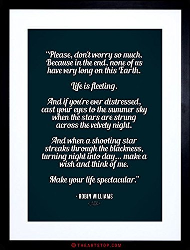 QUOTE ROBIN WILLIAMS DON'T WORRY LIFE SPECTACULAR FRAMED PRINT F97X9843