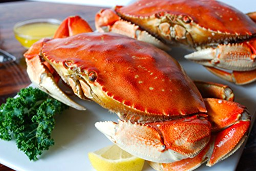 3 Cooked Dungeness Crab - Whole Crab