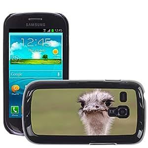 Super Stella Slim PC Hard Case Cover Skin Armor Shell Protection // M00144731 Strauss Bouquet Flightless Bird // Samsung Galaxy S3 MINI i8190