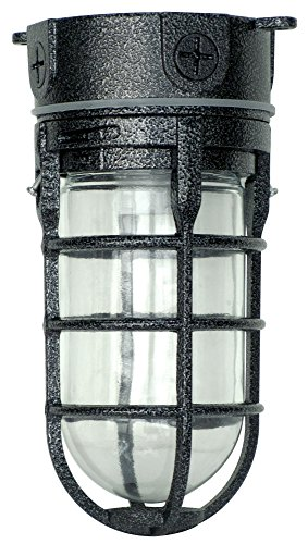 Woods L1706BLK Vandal Resistant 150W Incandescent Security Light, Ceiling Mount, Hammered Black - Light Outdoor Ceiling Fixture