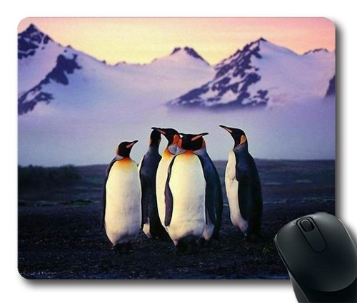 Antarctic Customized Mouse Pad NE07100550 product image