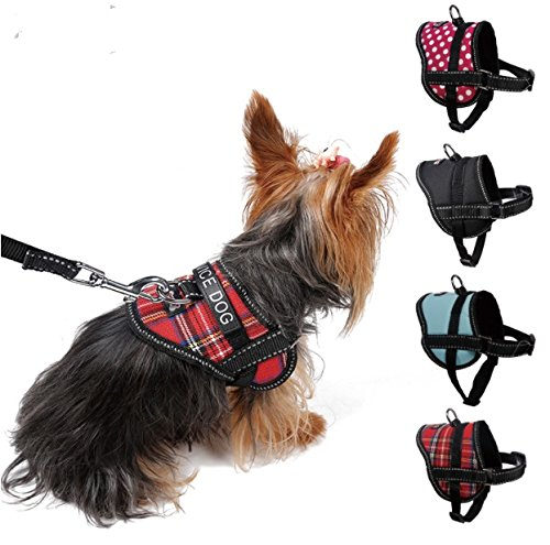 Register My Service Animal, LLC Emotional Support Animal Harness & Matching Leash Set For Small & Teacup Dogs | Three Fun Patches | Four Colors | Three sizes: 11'' - 19'' Girth by Register My Service Animal, LLC (Image #3)