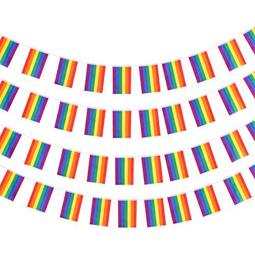 Whaline Lesbian Gay String Rainbow Flags 30 Feet Rainbow Flag Banner LGBT Pride Flag String Indoor/Outdoor Gay Lesbian Party Decoration ()