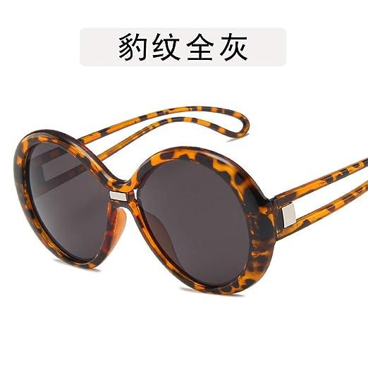 Yangjing-hl Gafas Planas Gafas Gafas de Sol Redondas de Dos ...