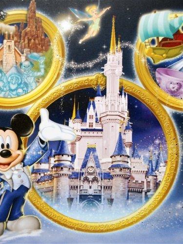Rare Lithograph Art (Rare Disney 4 Park Collector Lithograph Art Set Coa Wdw)