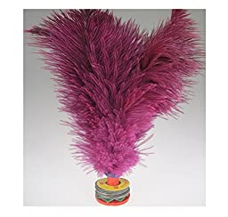 1 Pcs Professional Ostric Feather Kick Shuttlecock Chinese Jianzi Random Color