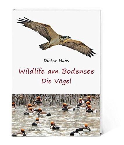 Wildlife am Bodensee: Die Vögel