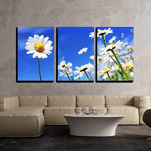 wall26 - 3 Piece Canvas Wall Art - Summer Field with White Daisies on Blue Sky - Modern Home Decor Stretched and Framed Ready to Hang - 16