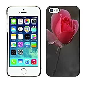 SHIMIN CAO- Dise?o Caso duro de la cubierta Shell protector FOR Apple iPhone 5 5S- Rose Pink Flower Romantic Love Heart