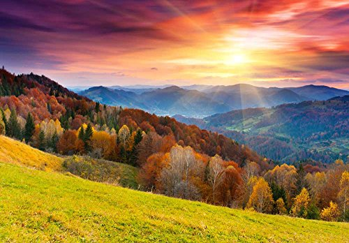 Colorful Mountain Forest in Automn Landscape Wall Mural