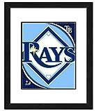 Photo File Tampa Bay Rays Team Logo Framed Print Picture Artwork 18x22 MLB FL