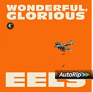 Wonderful, Glorious [2 CD][Deluxe Edition]