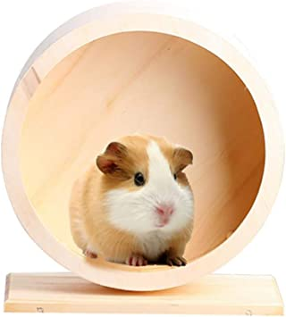 Popetpop Silent Hamster Wheel Pets Running Sports Exercise Wheel Jogging Wheel Hamster Rat Gerbil Silent Spinner Blue Amazon Co Uk Pet Supplies