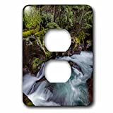 3dRose Danita Delimont - Rivers - Avalanche Gorge in Glacier National Park, Montana, USA - Light Switch Covers - 2 plug outlet cover (lsp_279213_6)