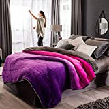 DreamPartyWorld Puple and Fushia Comforter with
